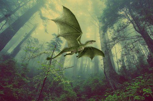 Il genere fantasy: come scrivere un romanzo fantasy.